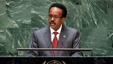 Photo of At UN, Somalia's President spotlights country's progress, but cautions eradicating terrorism 'will not be easy'