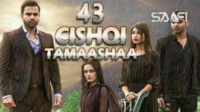Photo of Cishqi Tamaashaa Part 43 Musalsal cusub oo macaan