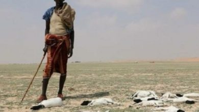 Photo of Over Quarter Million People Displaced In Somalia: UN