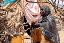 Photo of Conflict and drought displace 300,000 in Somalia so far this year