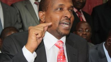 Photo of I am not a Somali citizen, Duale says amid dual citizenship probe