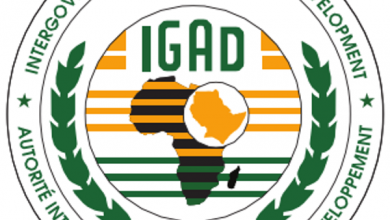 Photo of IGAD Pledges Support To Somalia In Fight Against Al-Shabaab