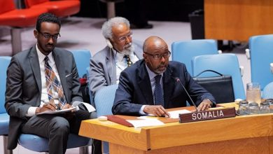 Photo of Arms sanctions outdated, not benchmarked, Somalia says
