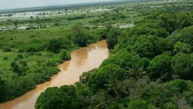 Photo of Italy withholds €6m for rehabilitation of Shabelle river banks after Somalia fails to submit proposals