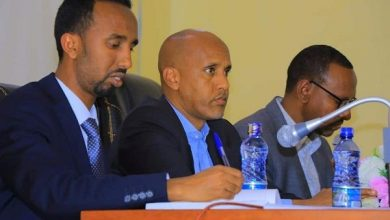 Photo of Somali Democratic Party EC unanimously approved merger with Prosperity Party