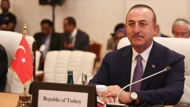 Photo of Somalia needs Turkey's help: Turkish foreign minister