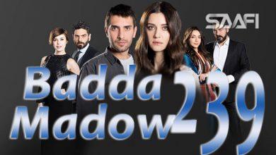 Photo of Badda madow Part 239 Musalsal qiso aad u macaan leh
