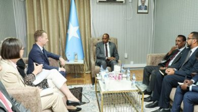 Photo of Somali PM Receives Visiting Danish Foreign Minister In Mogadishu