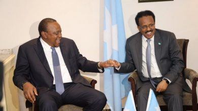 Photo of Somali President Meets With His Kenyan Counterpart In Nairobi