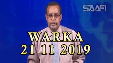 Photo of WARKA 21 11 2019 Dowlada Soomaaliya oo sheegtay in mudo sanad ah Soomaaliya laga dhoofinin dhuxul Sharci daro ah