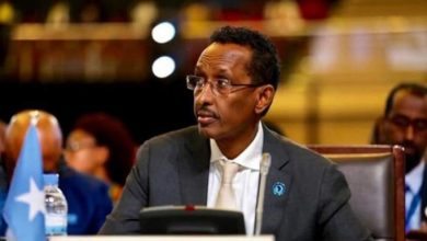 Photo of Somalia Calls On Nordic Countries To Invest In Tourism And Natural Resources