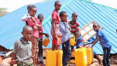 Photo of Yemen Unrest Makes Somalia Unlikely Safe Haven for Refugees
