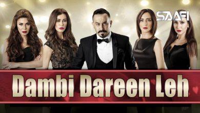 Dambi-Dareen-Leh-Saafifilms.com-Horudhaca-390x220.jpg