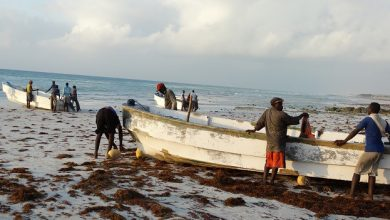 Photo of Somali fishermen in Hobyo down tools as power companies pull out