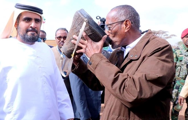 Photo of Somaliland And UAE Form Partnership To Increase Camel Milk Production