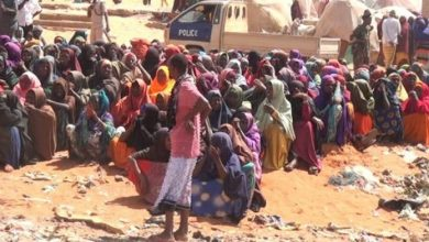 Photo of Somalia, UN Seek Humanitarian Aid To Avert Food Insecurity