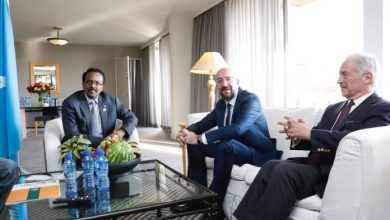 Photo of President Farmajo Holds Meeting With EU Official In Addis Ababa