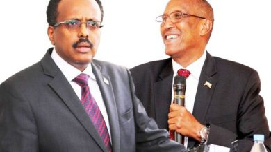 Photo of Farmajo Meets With Muse Bihi In Addis Ababa