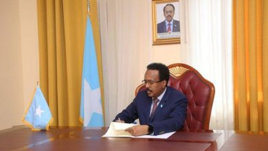 Photo of Somalia President Signs New Petroleum Bill Into Law