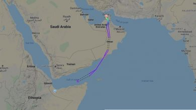 Photo of Somalia turns back UAE plane en route to Somaliland as flights ban takes effect