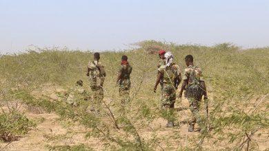 Photo of Somali Military Says Al-Shabaab Figure Captured In Lower Shabelle Region