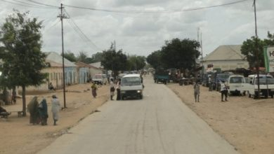 Photo of A Government Soldier Kills A Civilian In Bal'ad Town