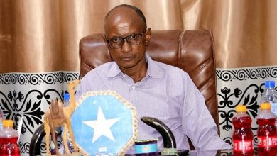 Photo of Hiiraan governor slams President Deni for divisive comments