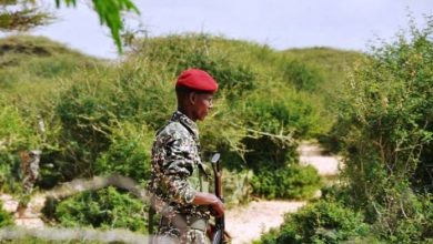Photo of Somali Special Forces Carry Out Operation In Lower Shabelle Region