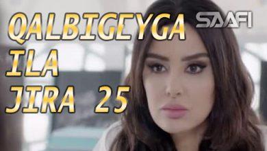 Photo of Qalbigeygaa Ila Jira Part 25