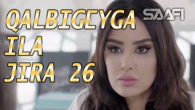 Photo of Qalbigeygaa Ila Jira Part 26
