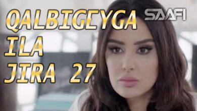 Photo of Qalbigeygaa Ila Jira Part 27