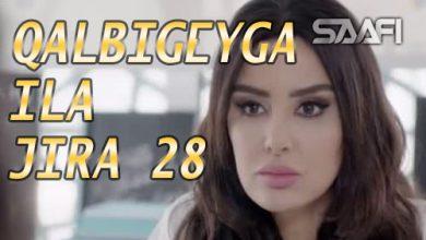 Photo of Qalbigeygaa Ila Jira Part 28