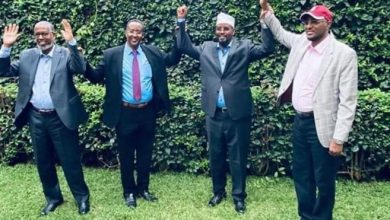 Photo of Madobe's deal with rivals is Ogaden clan pact-AMISOM head