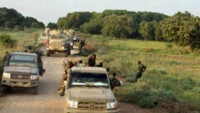 Photo of Somali Army Kills Seven Al-Shabaab Militants In Operation