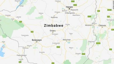 Photo of Shooting of Zimbabwe workers by Chinese mine owner shows 'systemic' abuse, watchdog says