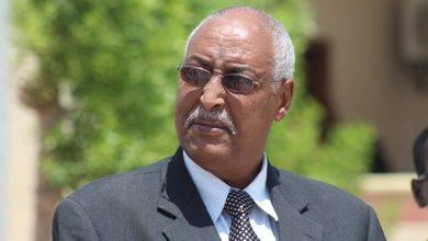 Photo of Abdihakim Amey: Somalia supports Ethiopia in Nile dispute