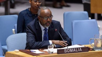 Photo of Somalia Elected As VP Of The UNGA's 75th Session