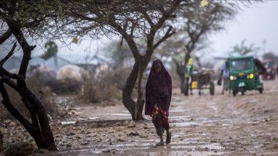 Photo of Somalia allocates $500K to help flood victims