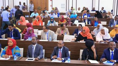 Photo of Reforming the representation of Banadir in the Upper House may trigger a constitutional crisis