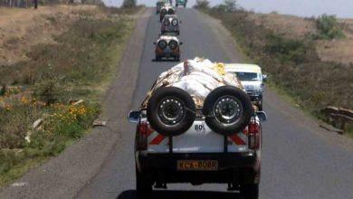 Photo of Kenya's Miraa Traders Say Somalia Flights Ban Ruining Their Business