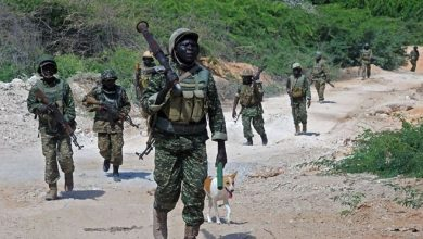 Photo of Weakened in battle, Shabaab now opts for softer targets