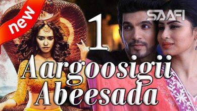 Aargoosigii Abeesada Part 1 Saafi Films Hindi Af Soomaali